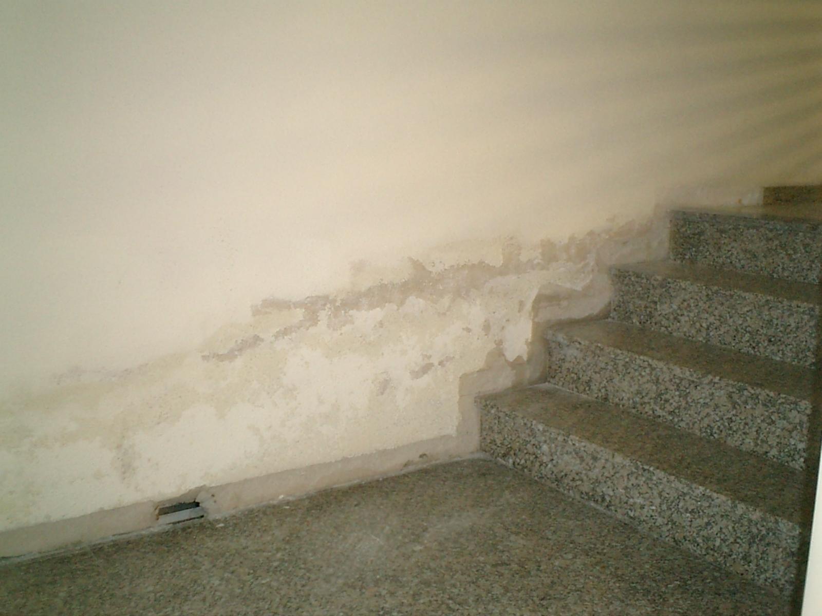 Humedades en paredes antes del tratamiento
