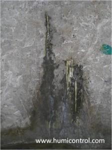 Inyección de resinas acuareactivas en filtraciones de agua